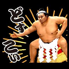 【芸能人スタンプ】貴乃花 スタンプ