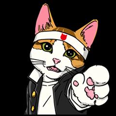 【無料スタンプ速報】なめ猫 学割応援団! スタンプ(2015年03月16日まで)