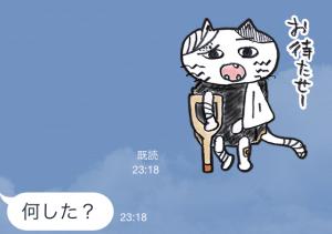 【隠しスタンプ】ゾゾタウン箱猫マックス スタンプ(2015年08月31日まで) (20)