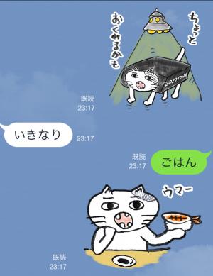 【隠しスタンプ】ゾゾタウン箱猫マックス スタンプ(2015年08月31日まで) (18)