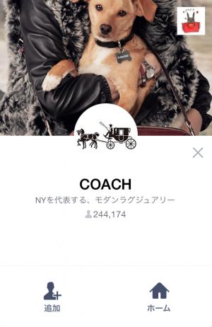 【隠しスタンプ】Meet the #coachpups スタンプ(2015年10月20日まで) (1)
