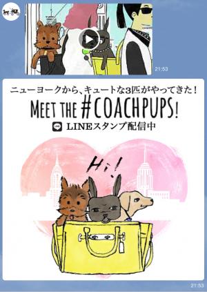 【隠しスタンプ】Meet the #coachpups スタンプ(2015年10月20日まで) (5)