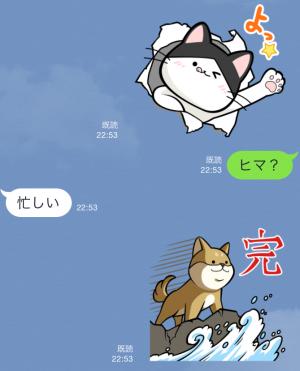 【限定無料スタンプ】いぬ・ねこのきもち「柴太郎」と「はちこ」 スタンプ(2015年09月07日まで) (6)