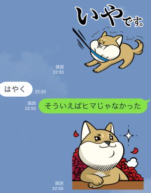 【限定無料スタンプ】いぬ・ねこのきもち「柴太郎」と「はちこ」 スタンプ(2015年09月07日まで) (10)