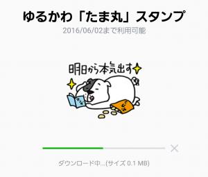 【限定無料スタンプ】ゆるかわ「たま丸」スタンプ(2015年12月28日まで) (2)