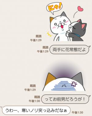 【限定無料スタンプ】タマ川 ヨシ子(猫)新作スタンプ第8弾♪ スタンプ(2016年01月11日まで) (12)