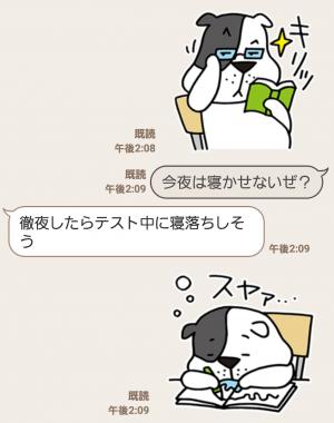 【限定無料スタンプ】ゆるかわ「たま丸」スタンプ(2015年12月28日まで) (9)