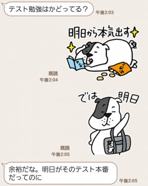 【限定無料スタンプ】ゆるかわ「たま丸」スタンプ(2015年12月28日まで) (7)