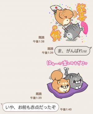 【隠し無料スタンプ】LINE LIVE×ボンレス犬&猫コラボ スタンプ(2016年03月02日まで) (7)