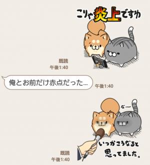 【隠し無料スタンプ】LINE LIVE×ボンレス犬&猫コラボ スタンプ(2016年03月02日まで) (8)