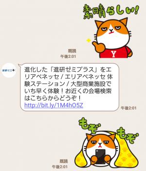 【隠し無料スタンプ】全16種類☆「たま丸」スタンプ(2016年05月29日まで) (5)