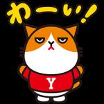 【隠し無料スタンプ】ふてニャン 素晴らしいY!mobile篇 スタンプ(2016年05月29日まで)
