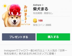 【公式スタンプ】柴犬まる スタンプ (1)