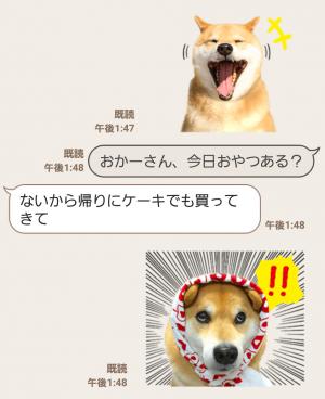 【公式スタンプ】柴犬まる スタンプ (3)
