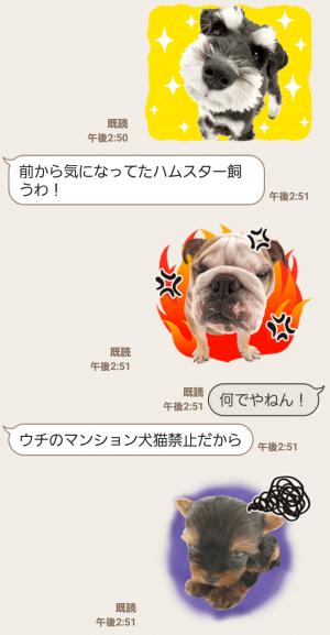 【公式スタンプ】THE DOG スタンプ (8)