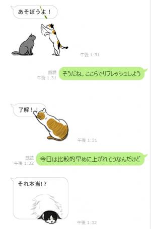 【公式スタンプ】動く!吹き出しに群がる猫 スタンプ (5)