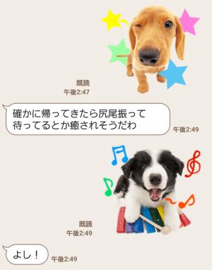 【公式スタンプ】THE DOG スタンプ (7)