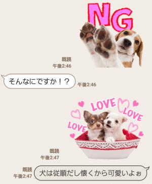 【公式スタンプ】THE DOG スタンプ (6)