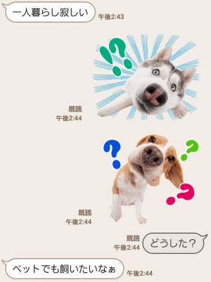 【公式スタンプ】THE DOG スタンプ (3)