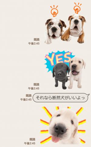 【公式スタンプ】THE DOG スタンプ (4)
