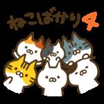 【人気スタンプランキングTOP100 (6/16)】