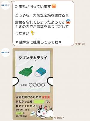 【限定無料スタンプ】進研ゼミプラス ゆるカワ♪たま丸スタンプ(2016年08月01日まで) (5)