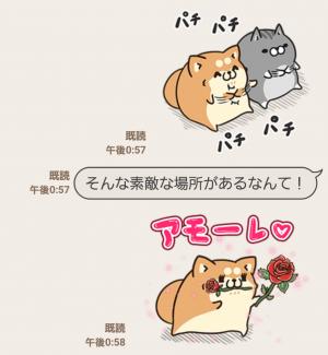 【限定無料スタンプ】アモーレ♡ボンレス犬&ボンレス猫 スタンプ(2016年08月10日まで) (7)