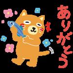 【隠し無料スタンプ】カテエネコ スタンプ(2016年09月21日まで)