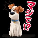 【限定無料スタンプ】ペット スタンプ(2016年08月22日まで)