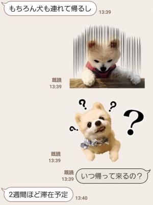 【公式スタンプ】犬の俊介くん スタンプ (5)