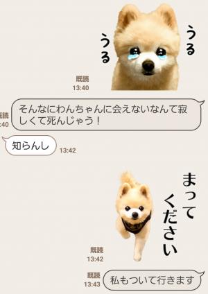 【公式スタンプ】犬の俊介くん スタンプ (6)
