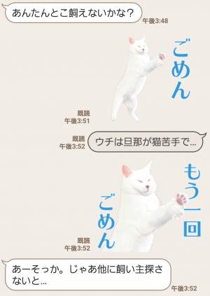 【人気スタンプ特集】自由すぎる!無重力猫ミルコ スタンプ (6)