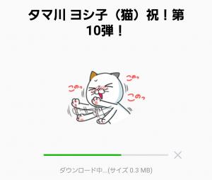 【限定無料スタンプ】タマ川 ヨシ子(猫)祝!第10弾! スタンプ(2016年09月26日まで) (2)