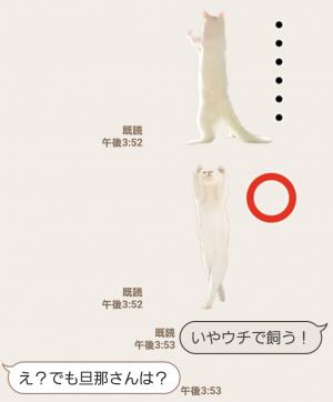 【人気スタンプ特集】自由すぎる!無重力猫ミルコ スタンプ (7)