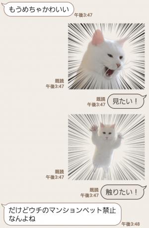 【人気スタンプ特集】自由すぎる!無重力猫ミルコ スタンプ (5)