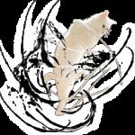 【人気スタンプ特集】自由すぎる!無重力猫ミルコ スタンプ