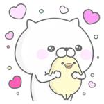 【無料スタンプ速報】ぬこ、ところによりピヨ。 × ワコール スタンプ(2016年12月05日まで)