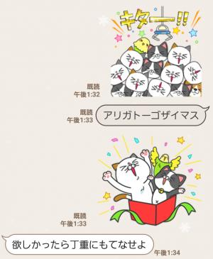 【限定無料スタンプ】タマ川 ヨシ子(猫)が飛び出す第11弾! スタンプ(2017年01月16日まで) (7)