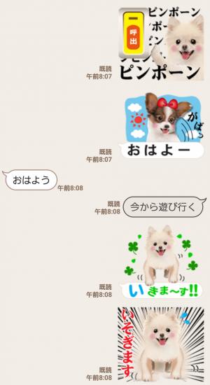 【人気スタンプ特集】かわいい犬たち スタンプ (3)