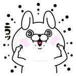 【無料スタンプ速報】fracora×うさぎ100パーセント スタンプ(2017年02月13日まで)