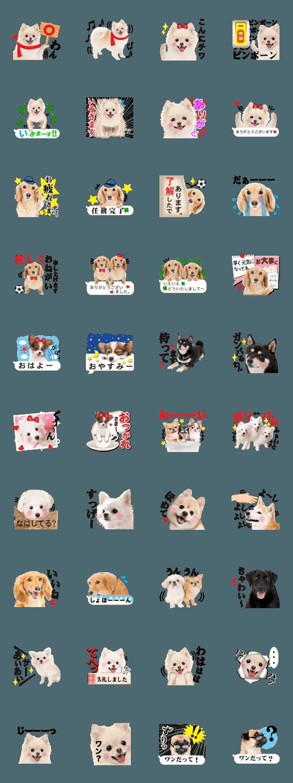 【人気スタンプ特集】かわいい犬たち スタンプ