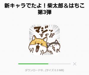 【限定無料スタンプ】新キャラでたよ!柴太郎&はちこ第3弾 スタンプ(2017年02月27日まで) (2)