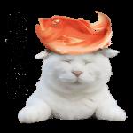 【人気スタンプ特集】乗せて使える のせ猫スタンプ