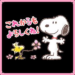 【イベント】LINE桜くじ開催!(3月23日(木)11:00~4月1日23:59まで) (12)