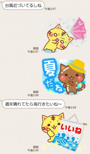 【人気スタンプ特集】にゃーにゃー団の夏 スタンプ (5)