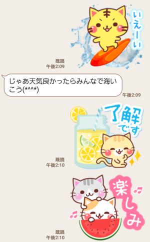 【人気スタンプ特集】にゃーにゃー団の夏 スタンプ (6)