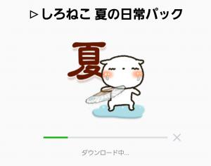【人気スタンプ特集】▷しろねこ 夏の日常パック スタンプ (2)