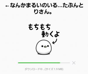 【人気スタンプ特集】←なんかまるいのいる...たぶんとりさん。 スタンプ (2)