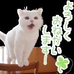 【人気スタンプランキングTOP100 (9/23)】