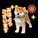 【人気スタンプランキングTOP100 (11/24)】